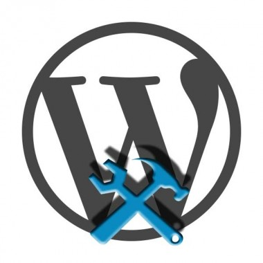 Professional-WordPress-Service