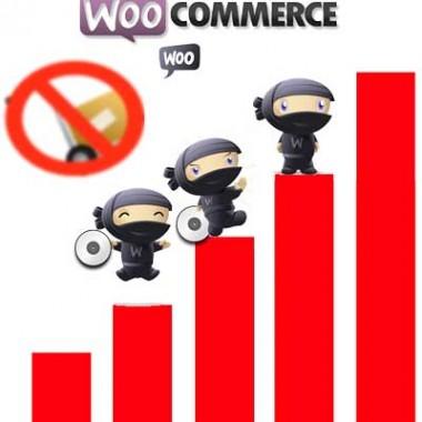 WooCommerce-conversion